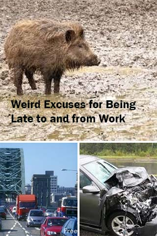 Weird Excuses for B eing Late to and from Work - wild boar, traffic jam, wrecks