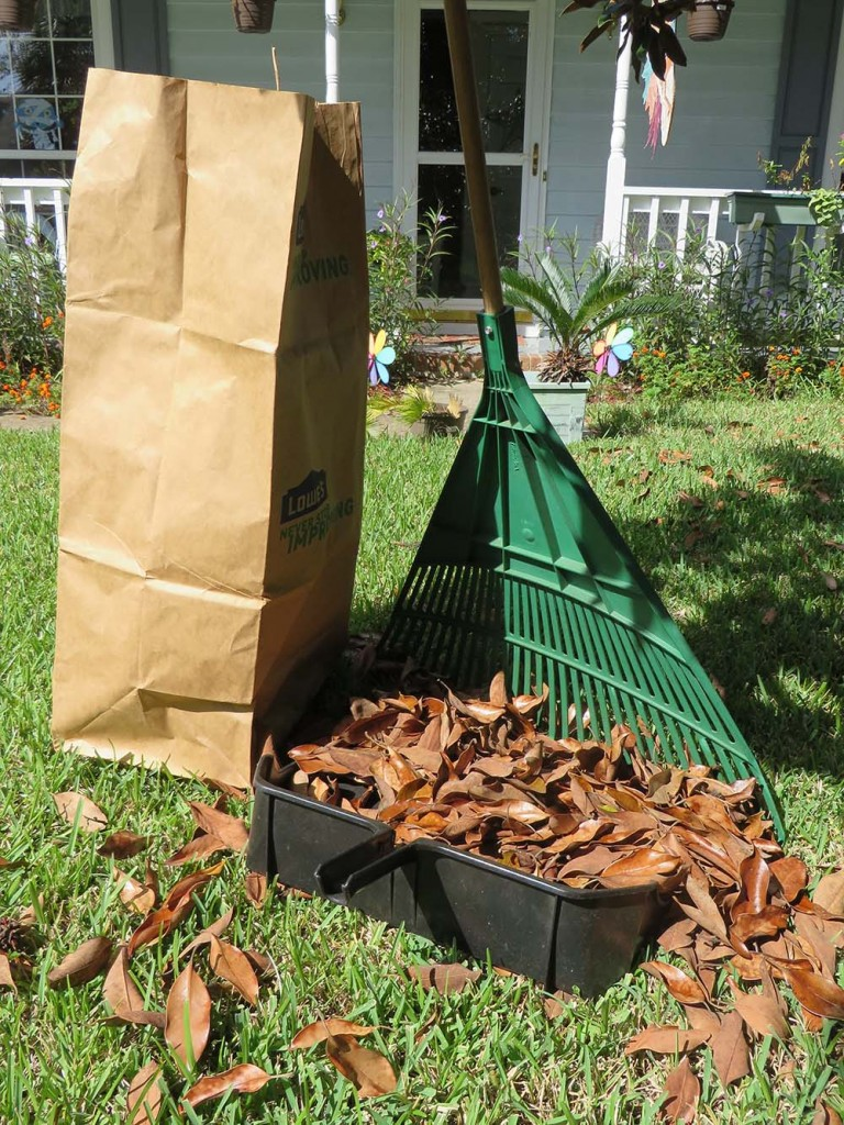 Using a giant dustpan to pick up leaves