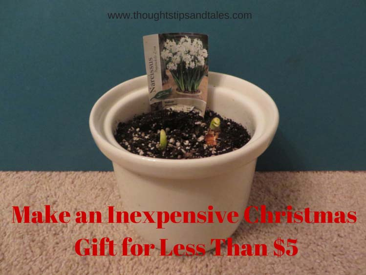 Make an Inexpensive Christmas Gift for Less Than $5