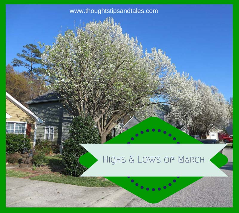 Highs and Lows of March 2015