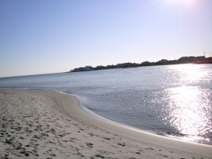 Eight Great Reasons to  Visit Charleston, South Carolina