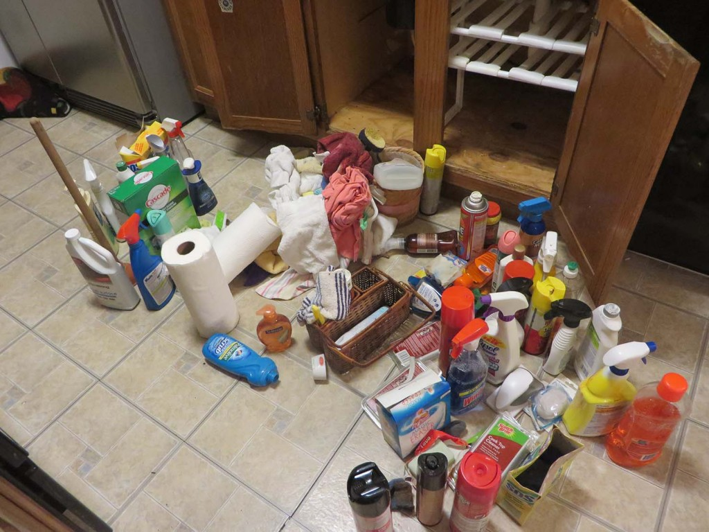 Decluttering Debrief: Week 3 of 52 -- -- Decluttering Under the Kitchen Sink
