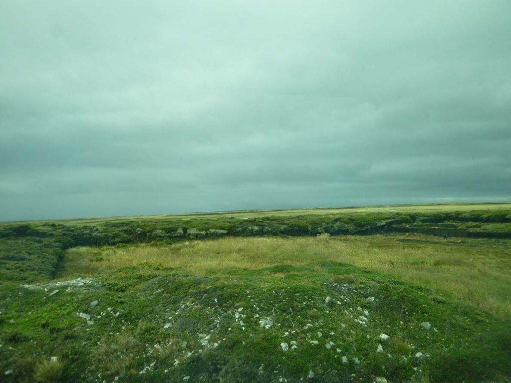 landscape on Falkland Island