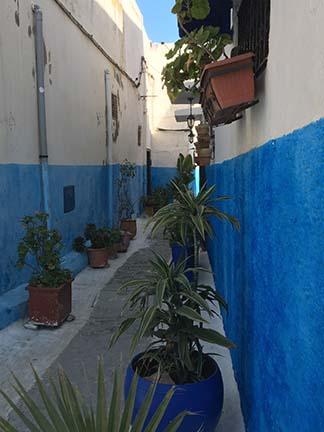 Casablanca shore excursion on Mediterranean cruise