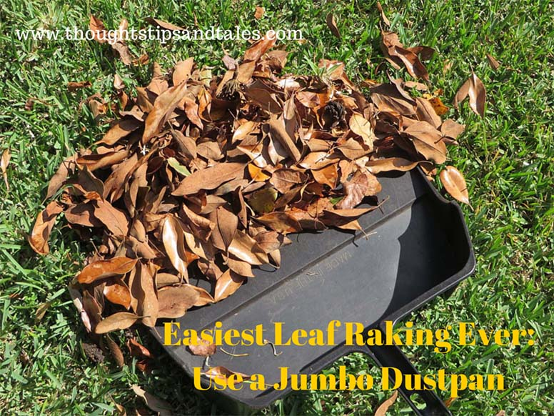 Easiest Leaf Raking Ever: Use a Jumbo Dustpan