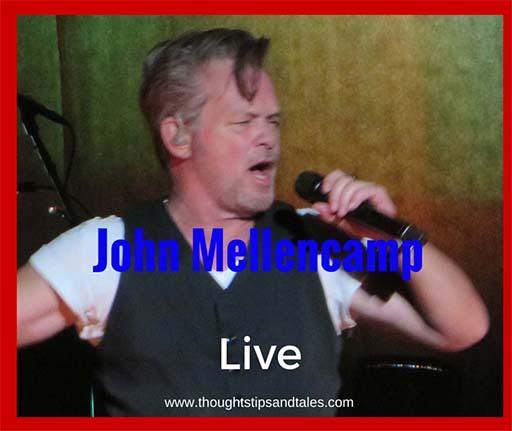 John Mellencamp live