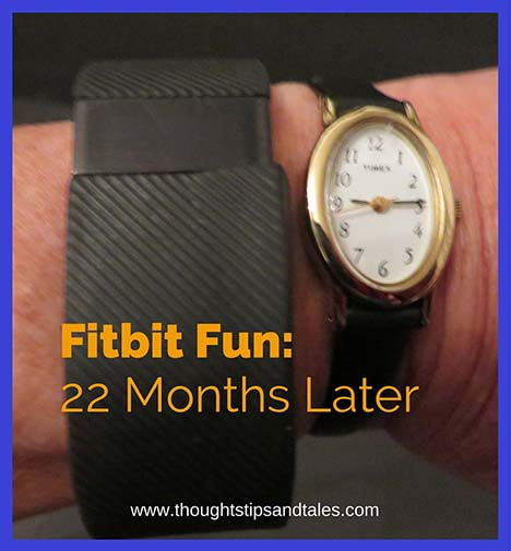 Fitbit Fun 22 Months Later