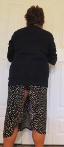 skirt-up2