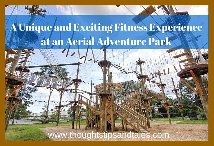 A Unique and Exciting Fitness Experience at an Aerial Adventure Park