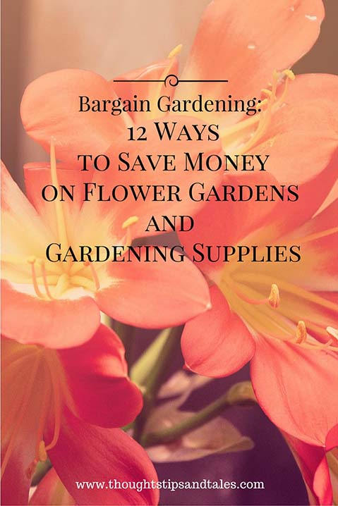 Bargain Gardening 12 Ways to Save Money on Flower Gardens and Gardening Supplies