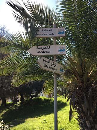 Casablanca Shore Excursion on Norwegian Mediterranean Cruise